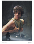 "Luke Skywalker ""Marooned"""