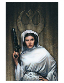 Star Wars Princess Leia - Rebel Princess